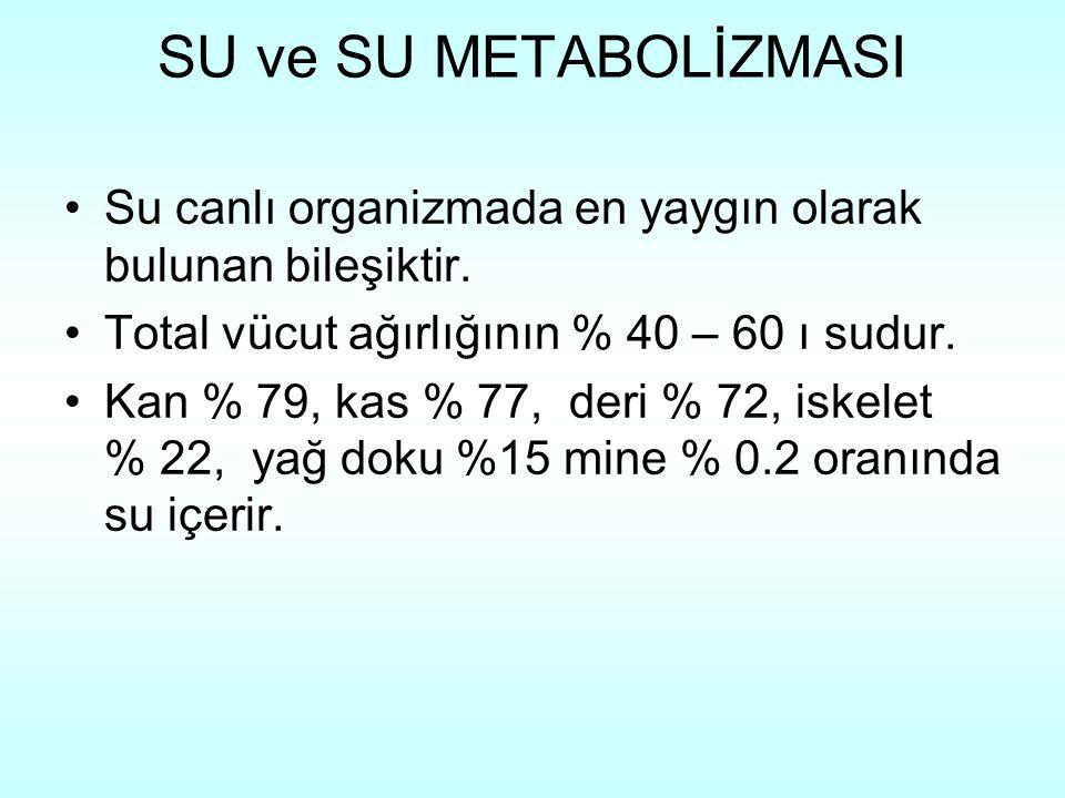 SU ve SU METABOLİZMASI Su canlı organizmada en yaygın olarak bulunan bileşiktir. Total vücut ağırlığının % 40 – 60 ı sudur.