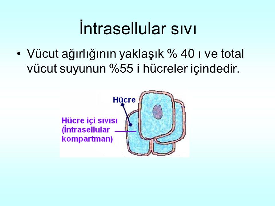 İntrasellular sıvı Vücut ağırlığının yaklaşık % 40 ı ve total vücut suyunun %55 i hücreler içindedir.
