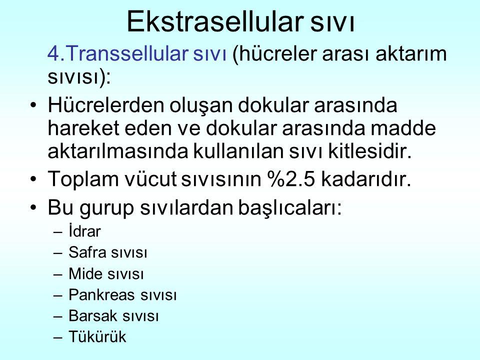 Ekstrasellular sıvı 4.Transsellular sıvı (hücreler arası aktarım sıvısı):