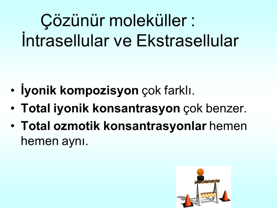 Çözünür moleküller : İntrasellular ve Ekstrasellular