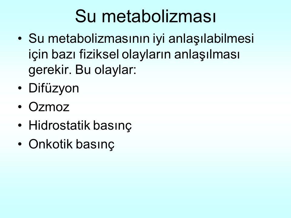 Su metabolizması Su metabolizmasının iyi anlaşılabilmesi için bazı fiziksel olayların anlaşılması gerekir. Bu olaylar: