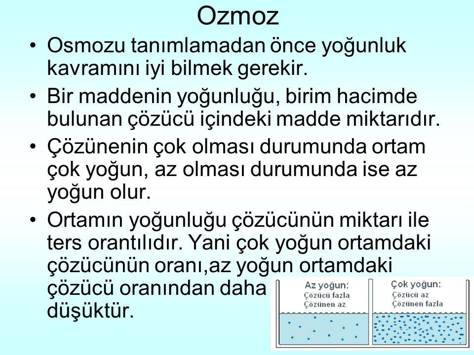 Ozmoz Osmozu tanımlamadan önce yoğunluk kavramını iyi bilmek gerekir.