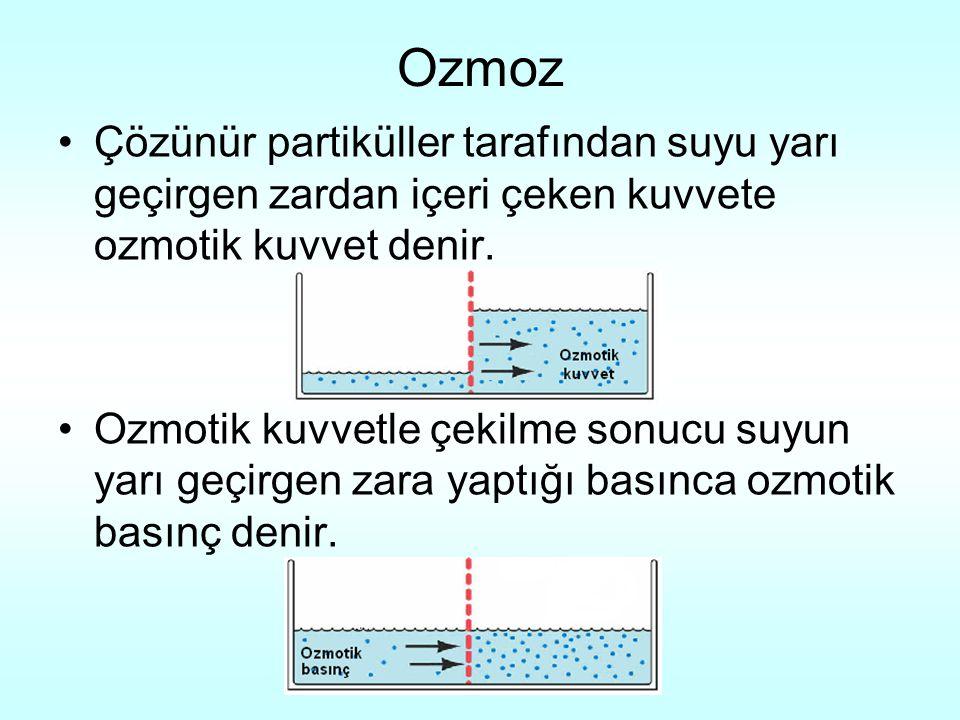 Ozmoz Çözünür partiküller tarafından suyu yarı geçirgen zardan içeri çeken kuvvete ozmotik kuvvet denir.
