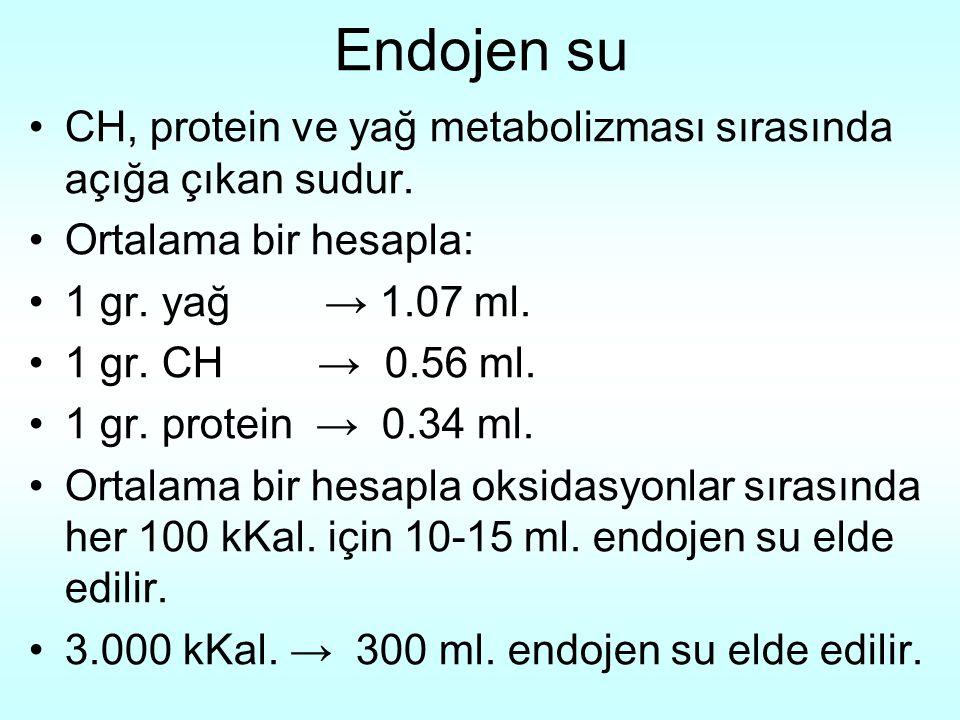 Endojen su CH, protein ve yağ metabolizması sırasında açığa çıkan sudur. Ortalama bir hesapla: 1 gr. yağ → 1.07 ml.