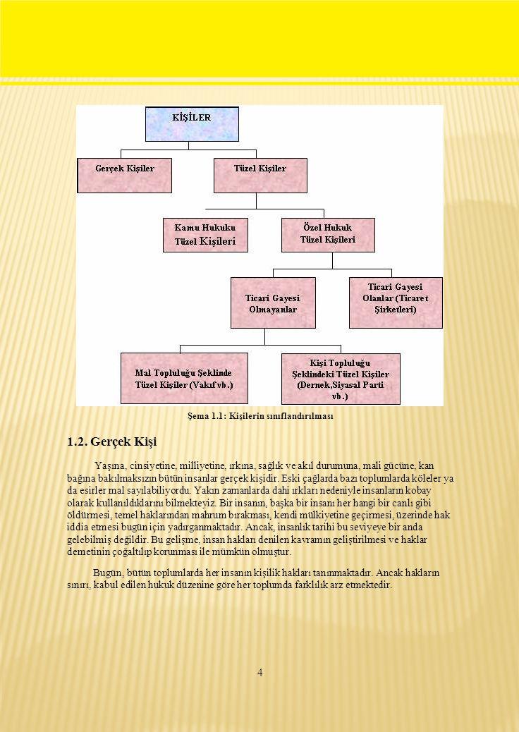 Şema 1.1: Kişilerin sınıflandırılması