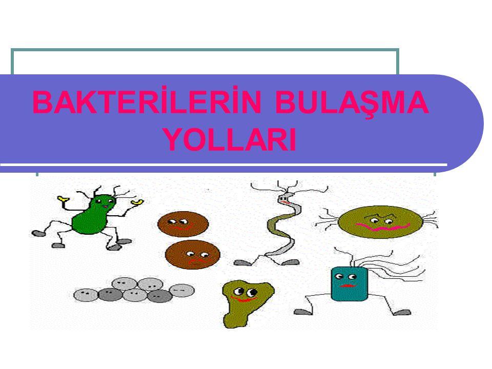 BAKTERİLERİN BULAŞMA YOLLARI