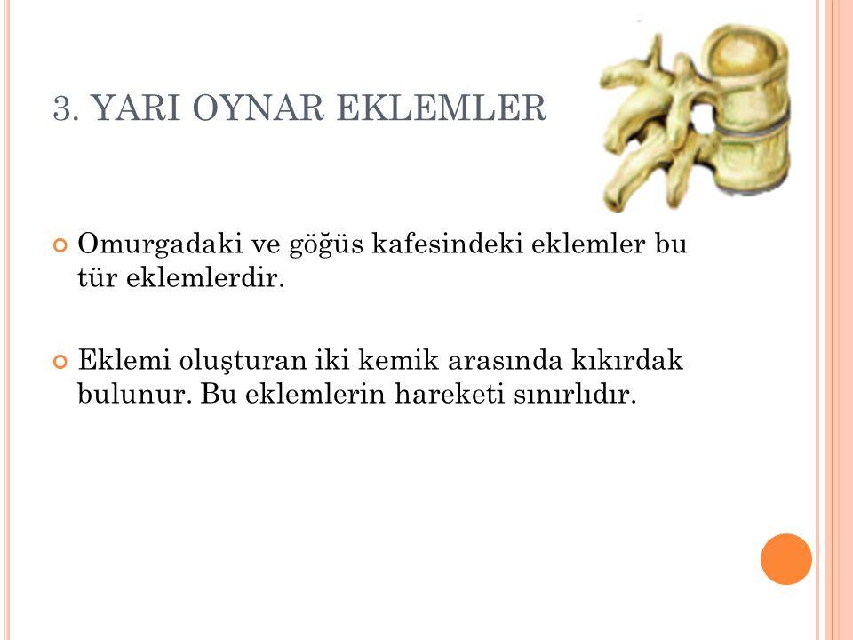 3. YARI OYNAR EKLEMLER Omurgadaki ve göğüs kafesindeki eklemler bu tür eklemlerdir.