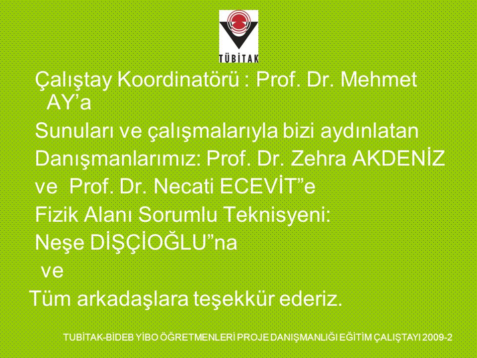 Çalıştay Koordinatörü : Prof. Dr. Mehmet AY'a