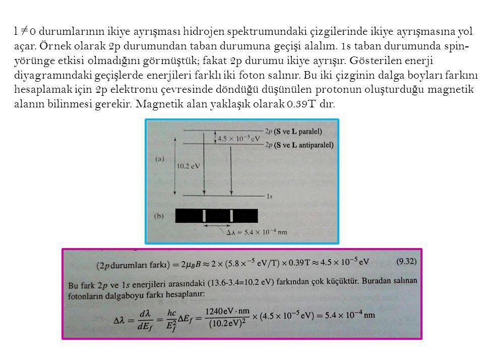 l 0 durumlarının ikiye ayrışması hidrojen spektrumundaki çizgilerinde ikiye ayrışmasına yol açar.
