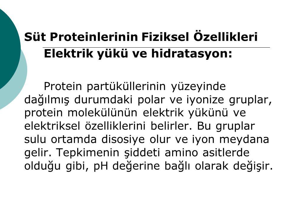 Süt Proteinlerinin Fiziksel Özellikleri Elektrik yükü ve hidratasyon: