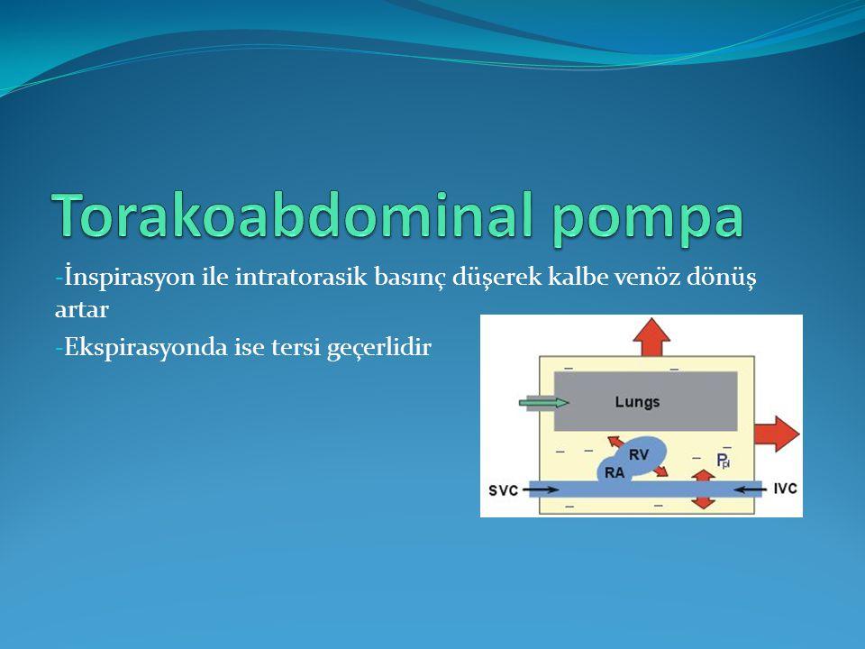 Torakoabdominal pompa