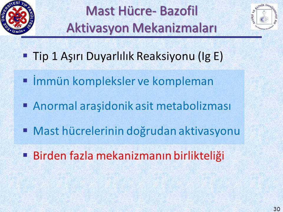 Mast Hücre- Bazofil Aktivasyon Mekanizmaları