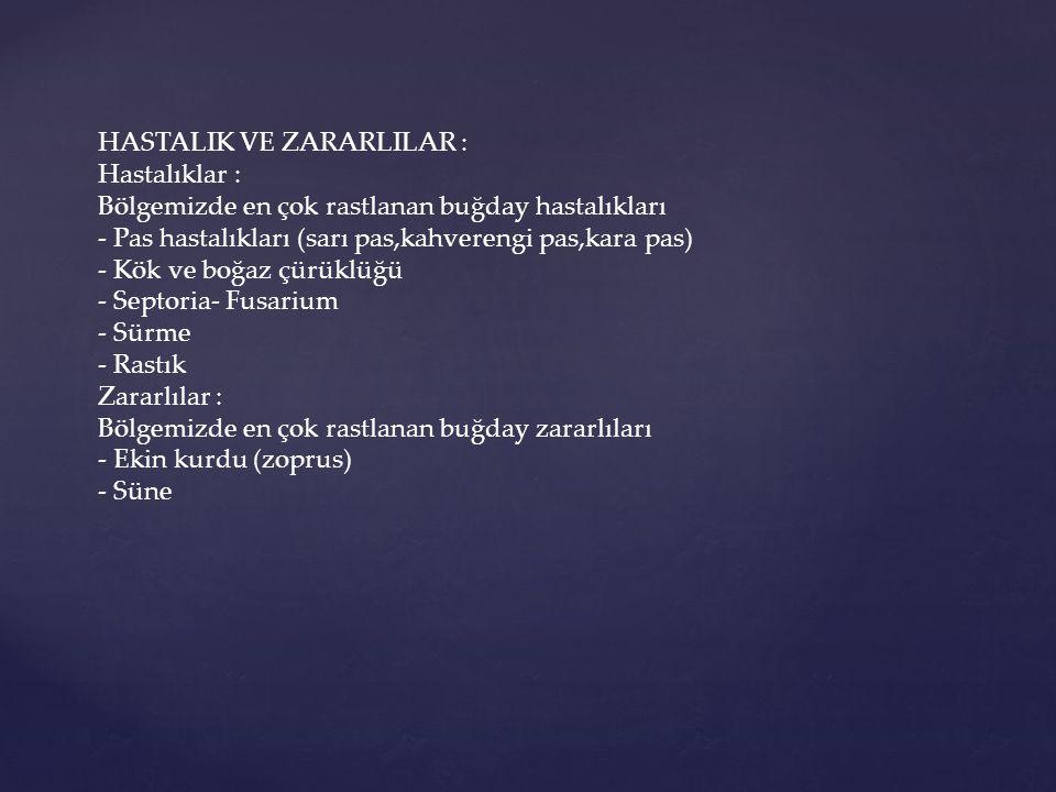 HASTALIK VE ZARARLILAR :