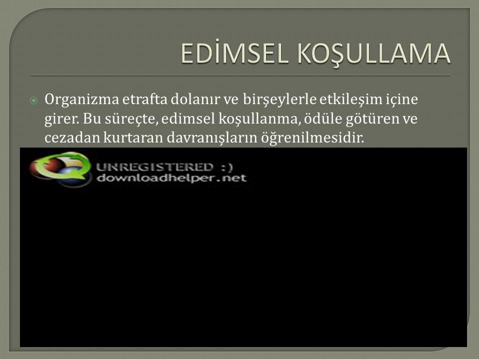 EDİMSEL KOŞULLAMA