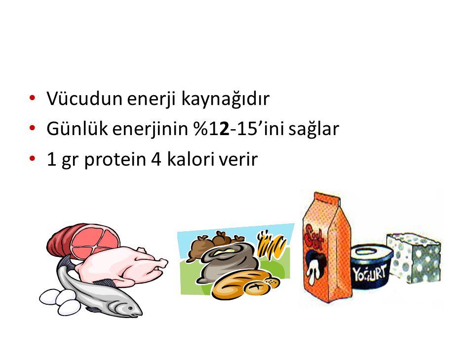 Vücudun enerji kaynağıdır