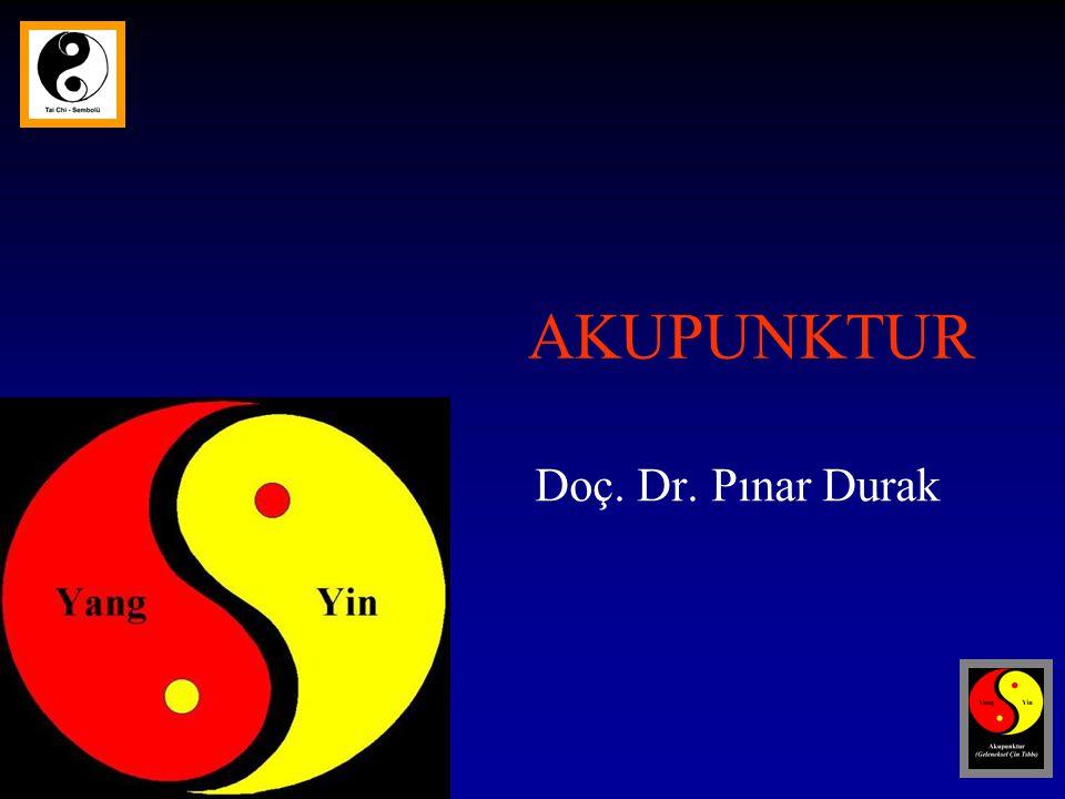 AKUPUNKTUR Doç. Dr. Pınar Durak