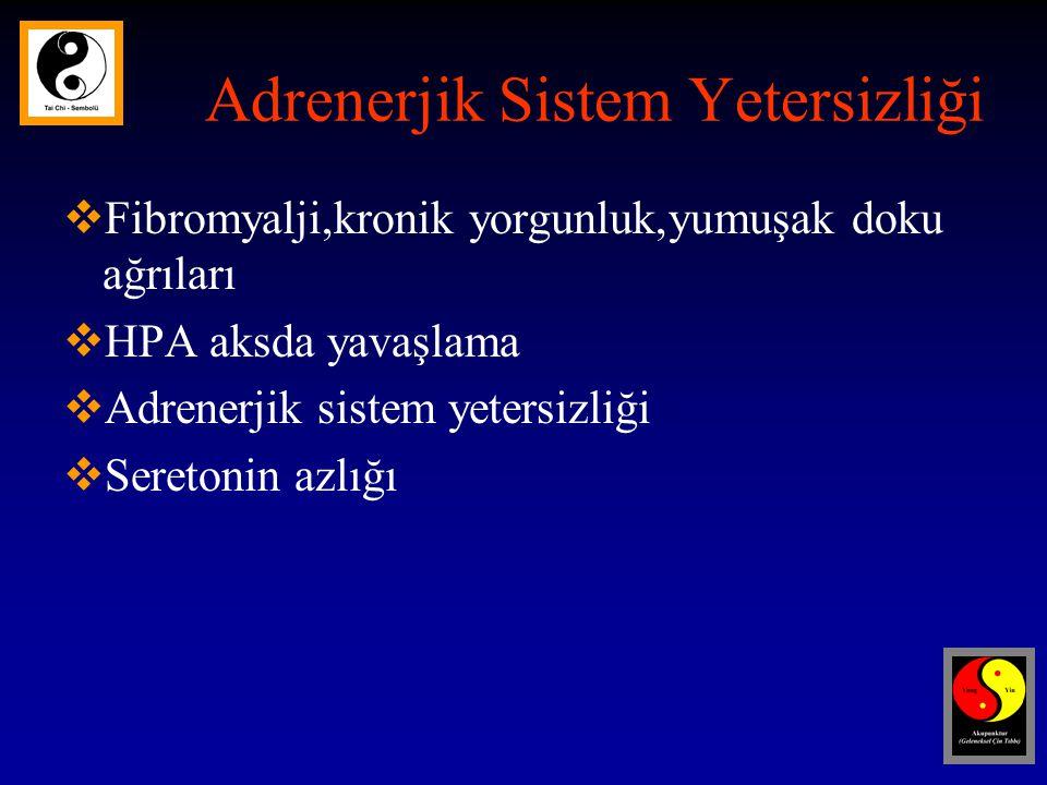 Adrenerjik Sistem Yetersizliği