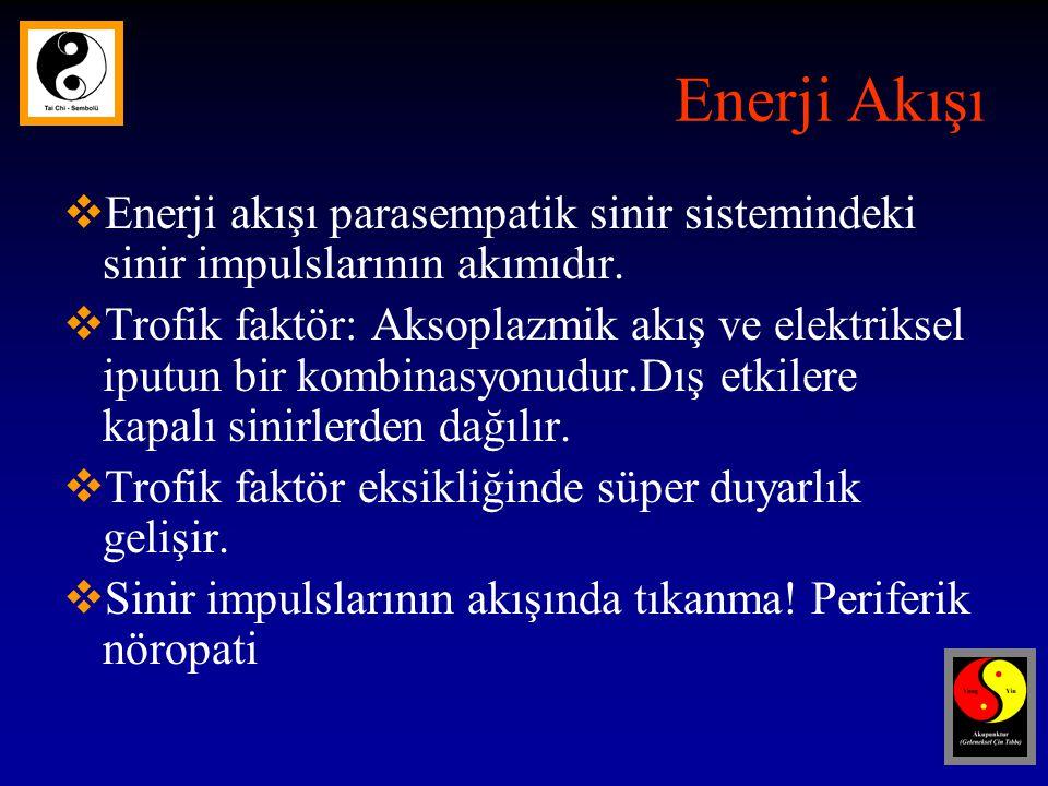 Enerji Akışı Enerji akışı parasempatik sinir sistemindeki sinir impulslarının akımıdır.