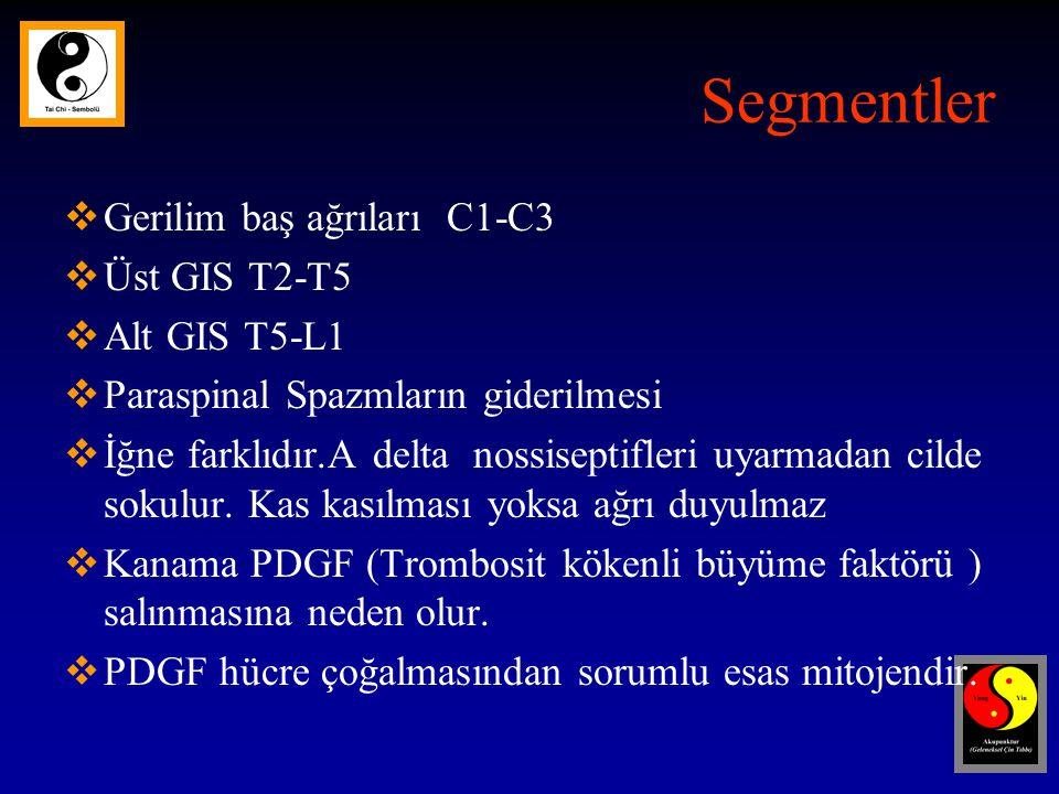 Segmentler Gerilim baş ağrıları C1-C3 Üst GIS T2-T5 Alt GIS T5-L1