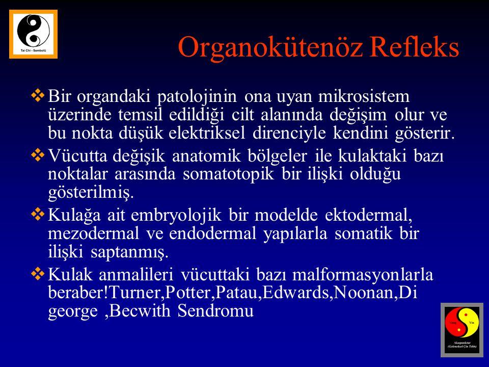 Organokütenöz Refleks
