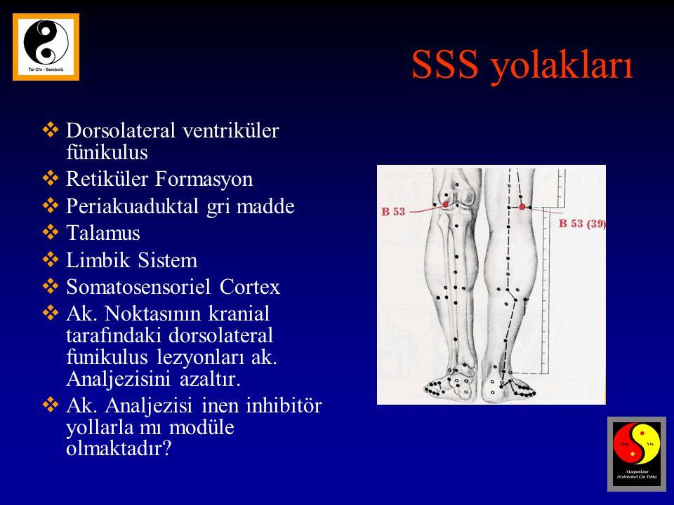 SSS yolakları Dorsolateral ventriküler fünikulus Retiküler Formasyon