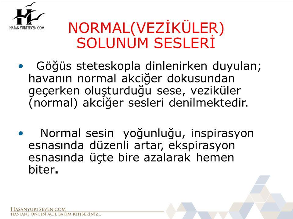 NORMAL(VEZİKÜLER) SOLUNUM SESLERİ