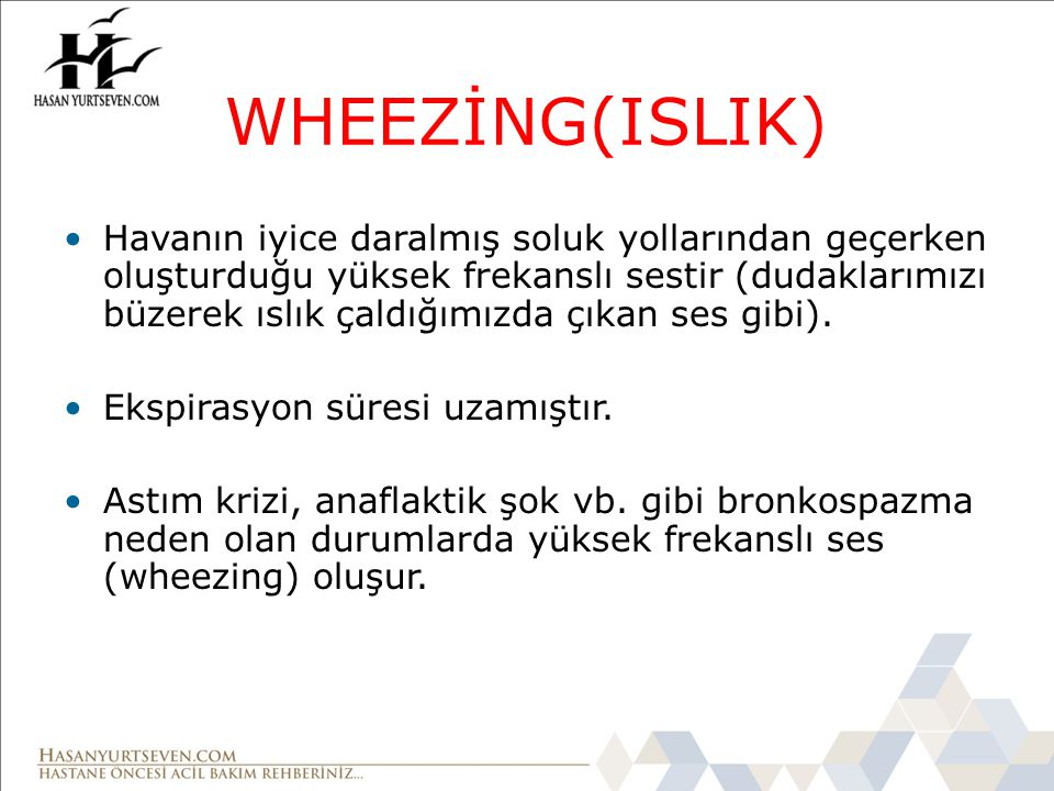 WHEEZİNG(ISLIK)