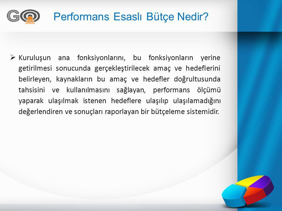 Performans Esaslı Bütçe Nedir
