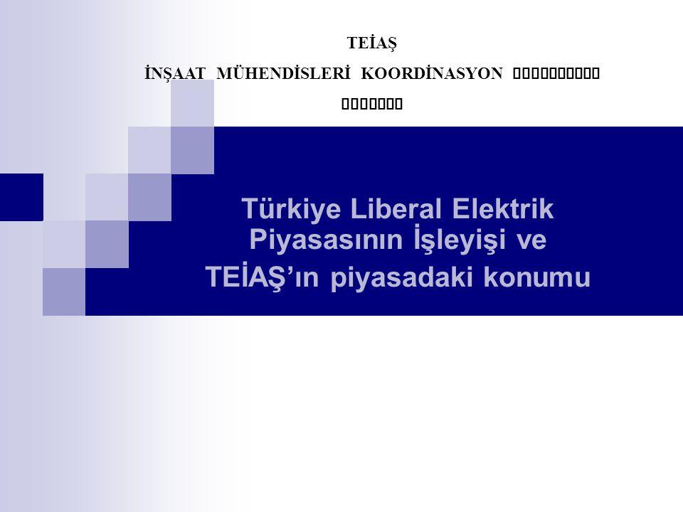Türkiye Liberal Elektrik Piyasasının İşleyişi ve