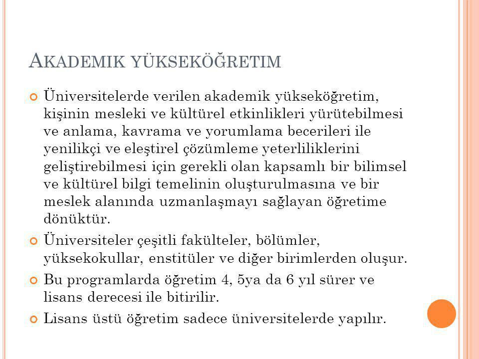 Akademik yükseköğretim