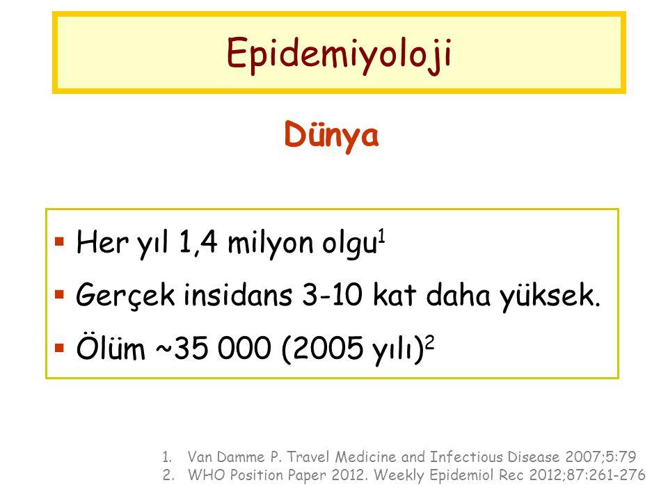 Epidemiyoloji Dünya Her yıl 1,4 milyon olgu1 < 15 yaş