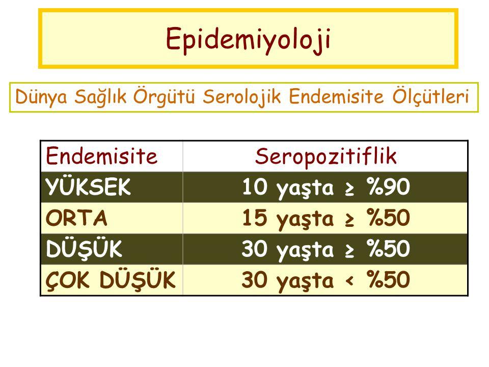 Epidemiyoloji Endemisite Seropozitiflik YÜKSEK 10 yaşta ≥ %90 ORTA
