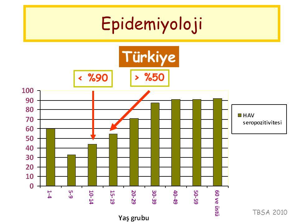 Epidemiyoloji Türkiye < %90 > %50 TBSA 2010