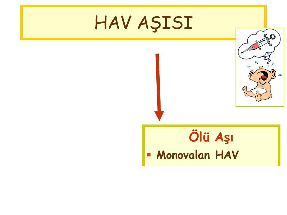 HAV AŞISI Canlı Aşı Çin Ölü Aşı Monovalan HAV Kombine HAV+HBV