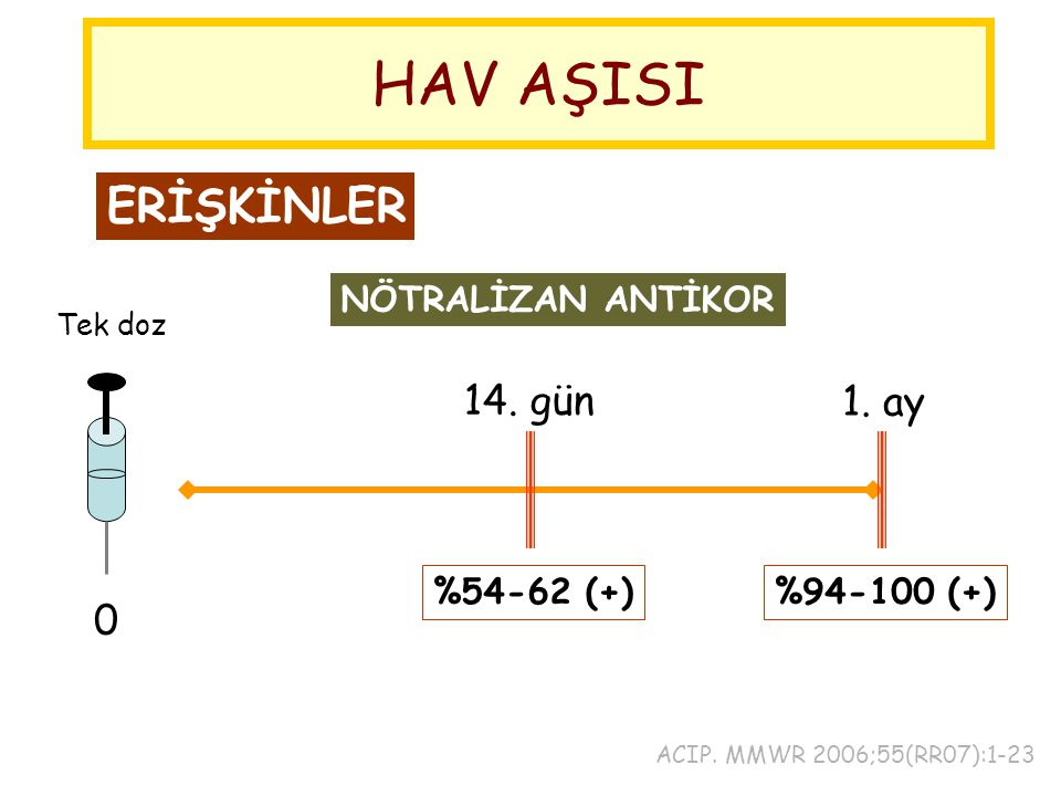 HAV AŞISI ERİŞKİNLER 14. gün 1. ay NÖTRALİZAN ANTİKOR %54-62 (+)