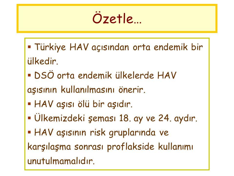 Özetle… Türkiye HAV açısından orta endemik bir ülkedir.