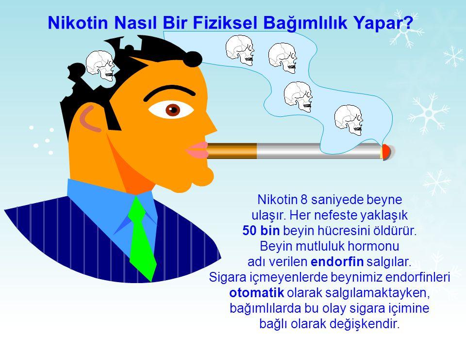 Nikotin Nasıl Bir Fiziksel Bağımlılık Yapar