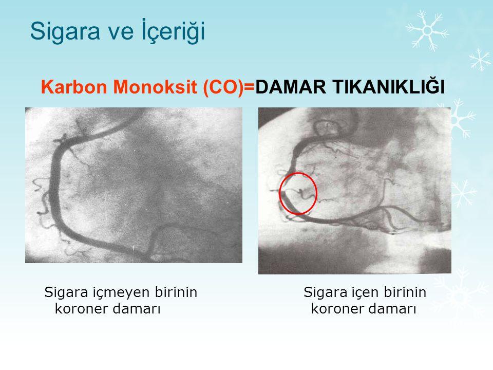 Karbon Monoksit (CO)=DAMAR TIKANIKLIĞI