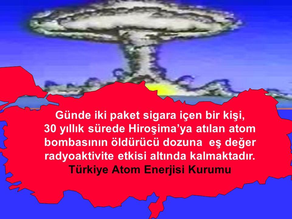 Günde iki paket sigara içen bir kişi, Türkiye Atom Enerjisi Kurumu