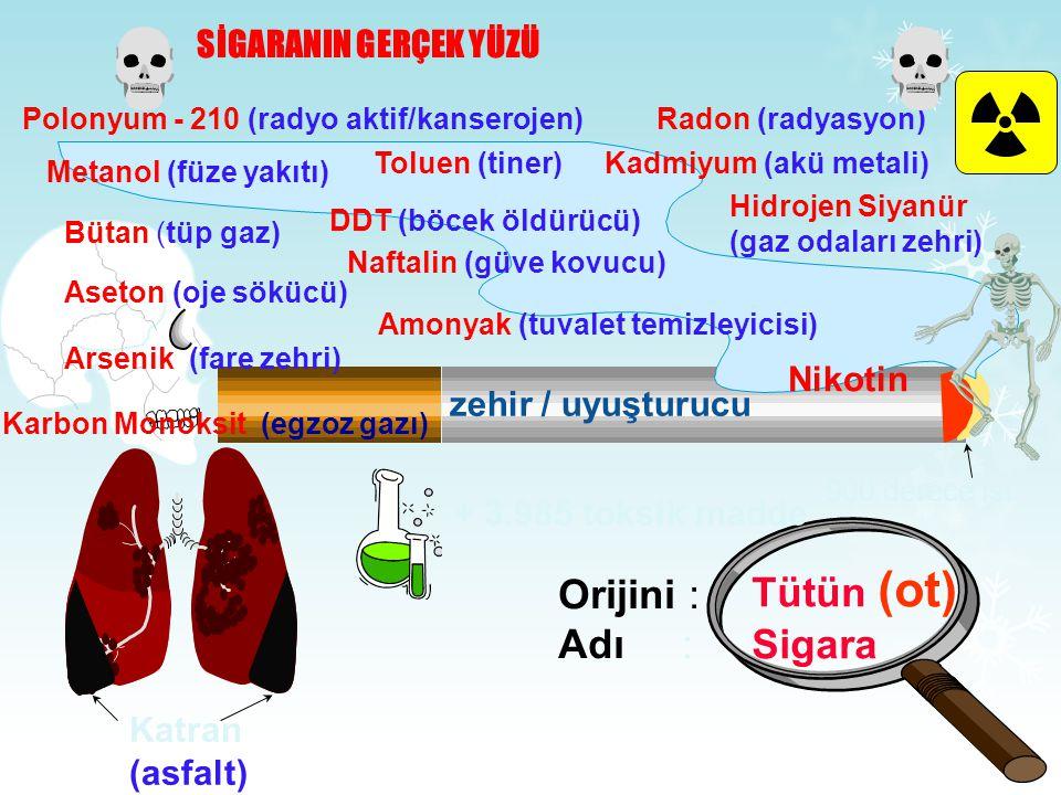 Tütün (ot) Orijini : Sigara Adı : SİGARANIN GERÇEK YÜZÜ Nikotin