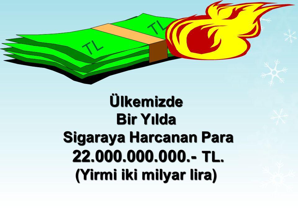 Sigaraya Harcanan Para (Yirmi iki milyar lira)