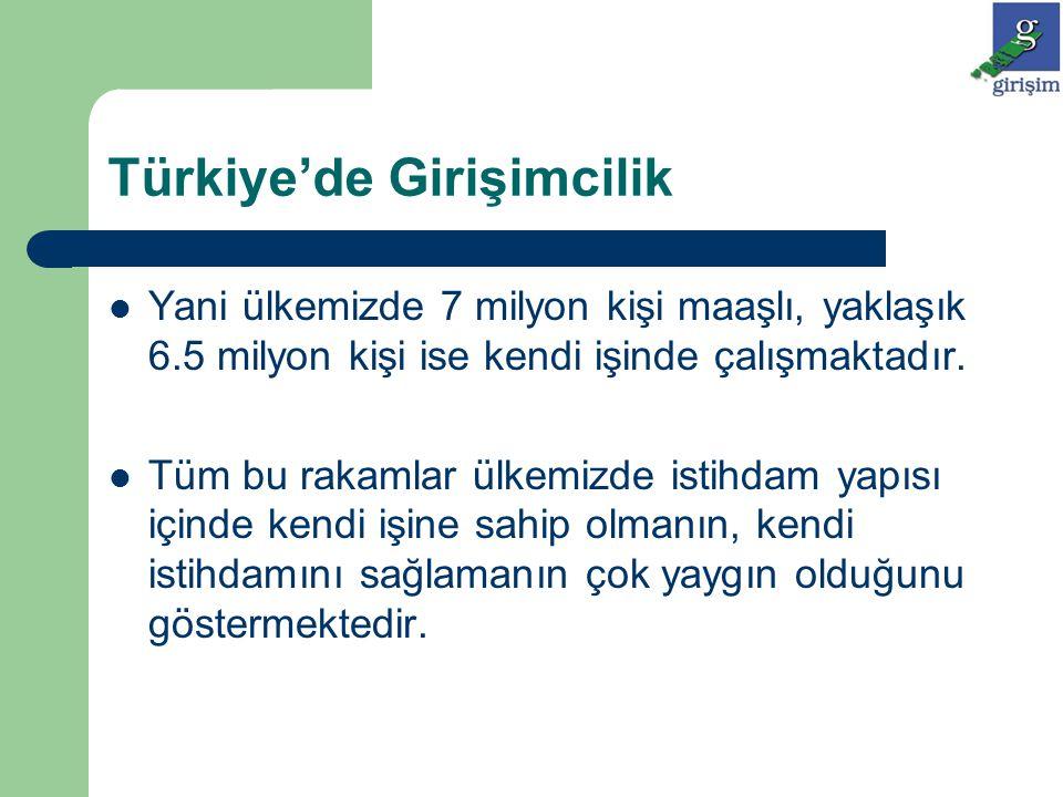 Türkiye'de Girişimcilik