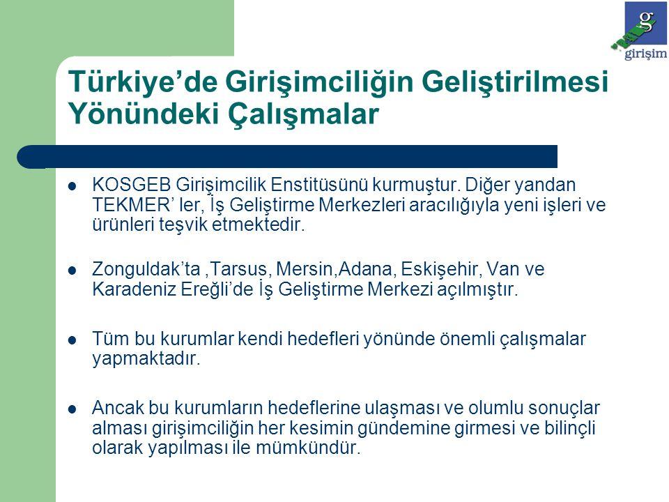 Türkiye'de Girişimciliğin Geliştirilmesi Yönündeki Çalışmalar