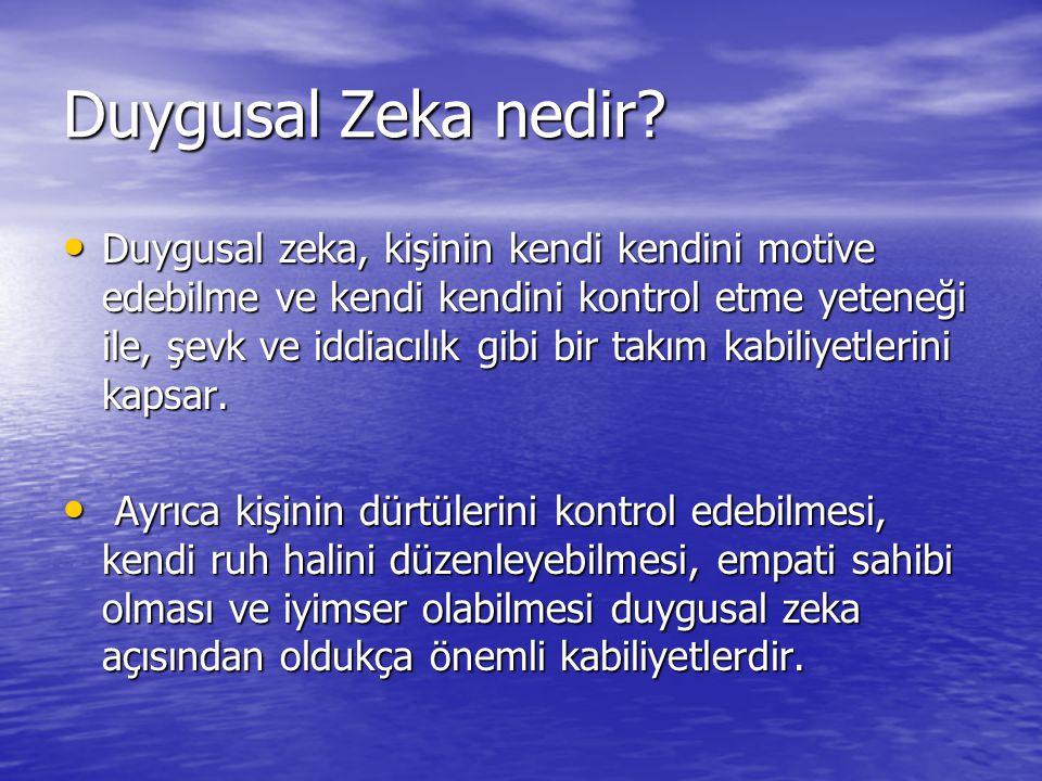 Duygusal Zeka nedir