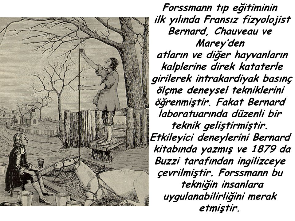 Forssmann tıp eğitiminin