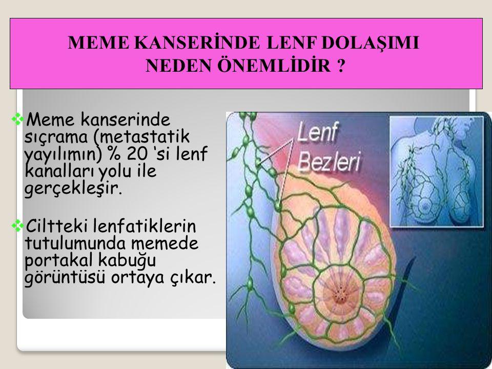 MEME KANSERİNDE LENF DOLAŞIMI
