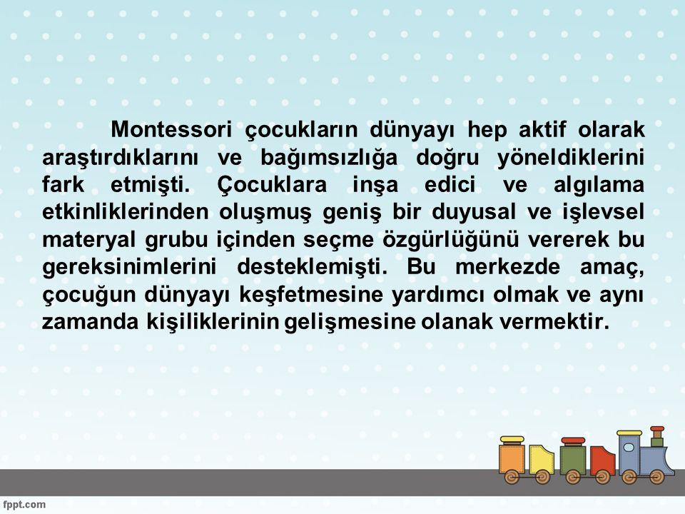 Montessori çocukların dünyayı hep aktif olarak araştırdıklarını ve bağımsızlığa doğru yöneldiklerini fark etmişti.