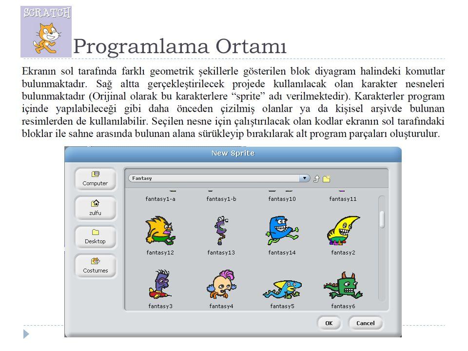 Programlama Ortamı