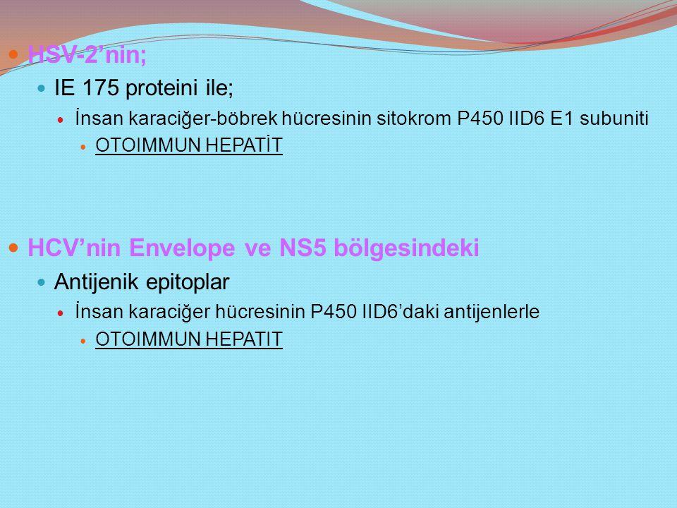 HCV'nin Envelope ve NS5 bölgesindeki