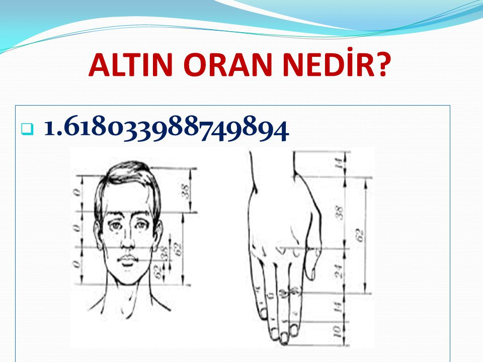 ALTIN ORAN NEDİR 1.618033988749894